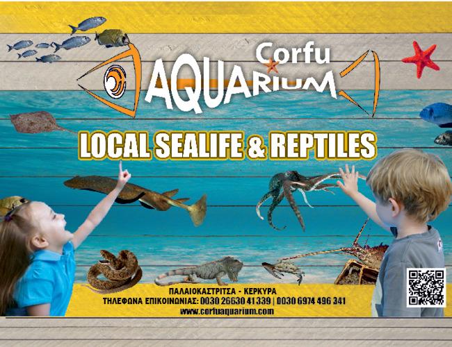 Ενημερωθείτε για την Θαλάσσια ζωή της Κέρκυρας μέσω του Awuarium Corfu στο mykerkyra.com