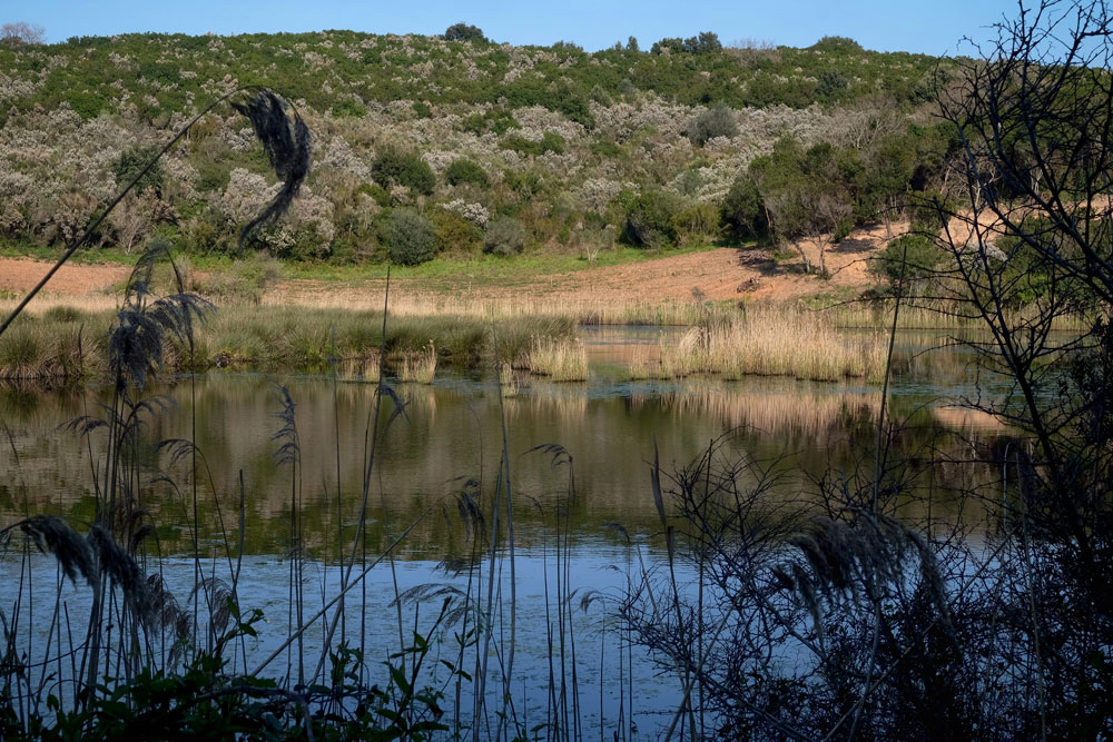 Akoli wetland Corfu